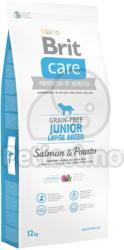 Brit Care Grain-free Junior Large Breed - Salmon & Potato 3x12kg
