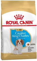 Royal Canin Cavalier King Charles Junior 1, 5 kg