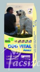 DOG VITAL Adult Large Breed Lamb & Rice 2x12kg