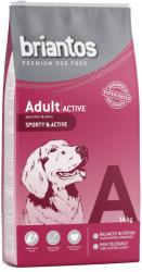 Briantos Adult Active 2x14kg