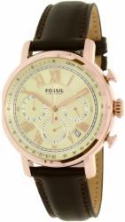 Fossil FS5103