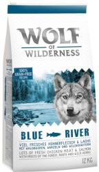 Wolf of Wilderness Blue River - Salmon 2x12kg