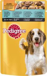 Pedigree Adult Turkey & Carrots 100g