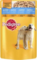 Pedigree Junior Chicken 100g
