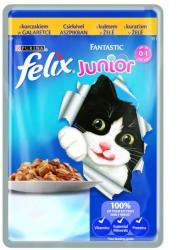 FELIX Fantastic Junior Chicken 100g