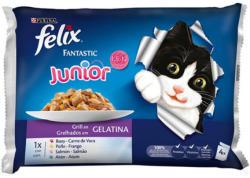 FELIX Fantastic Junior Chicken & Salmon 4x100g