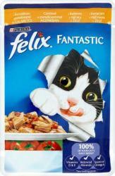 FELIX Fantastic Chicken & Tomato 100g