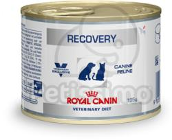 Royal Canin Recovery 6x195g