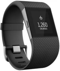 Fitbit Surge L