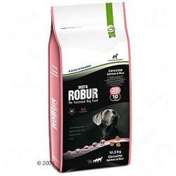 Bozita Robur Genuine Salmon & Rice (20/10) 2x12,5kg