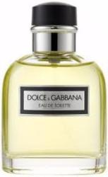 Dolce&Gabbana Pour Homme EDT 100ml Tester