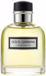 Dolce&Gabbana Pour Homme EDT 100ml Tester