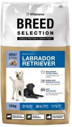 Wildsterne Breed Selection - Labrador Retriever 10kg