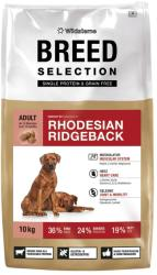 Wildsterne Breed Selection - Rhodesian Ridgeback 10kg