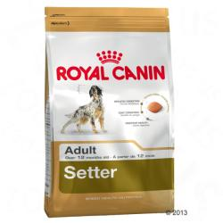 Royal Canin Setter Adult 2x12kg