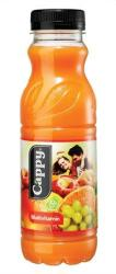 Cappy Multivitamin gyümölcsital 0,33L