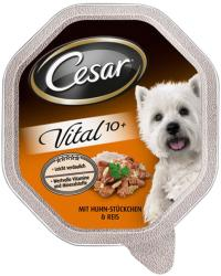 Cesar Vital 10+ (Senior) - Chicken & Rice 24x150g