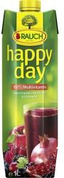 Rauch Happy Day Red Multivitamin 100%-os gyümölcslé 1L
