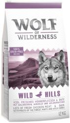 Wolf of Wilderness Wild Hills 2x12kg