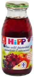 HiPP Bio alma-szőlő-feketeribizli gyümölcslé 0,2L