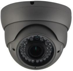ACESEE IP-T30130