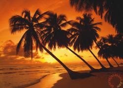 Schmidt Spiele Tropical Sunset 500 db-os (58193)