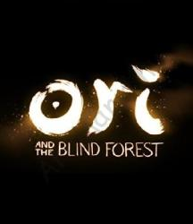 Nordic Games Ori and the Blind Forest [Limited Edition] (PC)