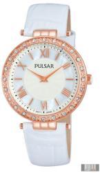 Pulsar PM2110