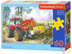 Castorland Fakitermelés 60 db-os (B-06601)