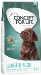 Concept for Life Large Junior 2x12kg