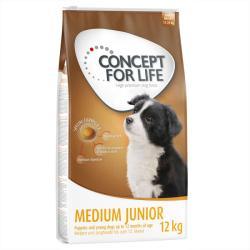 Concept for Life Medium Junior 2x12kg