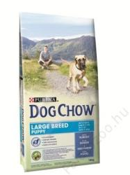 Dog Chow Puppy Large Breed 4x2,5kg