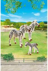 Playmobil Familie De Zebre (PM6641)