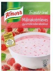 Knorr Frissítő Ízek Málnakrémleves 41g