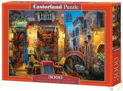 Castorland A különleges helyünk, Velence 3000 db-os (C-300426)