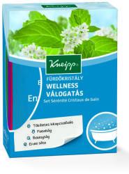Kneipp Wellness válogatás fürdőkristály 4x60g