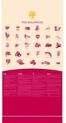 Essential Foods Beginning 12,5kg