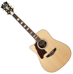 D´Angelico SD-500 Bowery Lefty