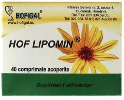 Hofigal Hof Lipomin - 40 comprimate