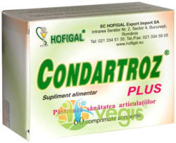 Hofigal Condartroz Plus - comprimate