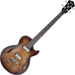 Ibanez AGBV-200A