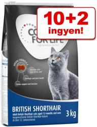 Concept for Life All Cats 10+ 12kg