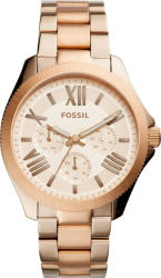 Fossil Am4634