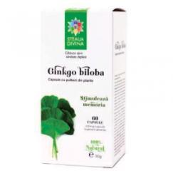 Steaua Divina Ginkgo Biloba - 60 comprimate