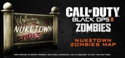 Activision Call of Duty Black Ops II [Nuketown 2025 Map] (PC)