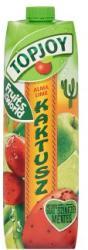 Topjoy Alma-lime-kaktusz ital 1L