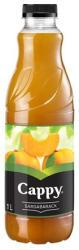 Cappy Sárgabarack ital 25% 1L