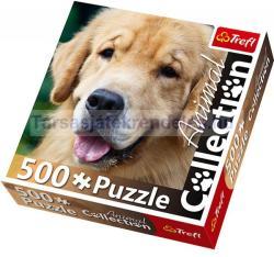 Trefl Animal Collection - Golden Retriever 500 db-os (90444)