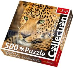 Trefl Animal Collection - Leopárd 500 db-os (90443)