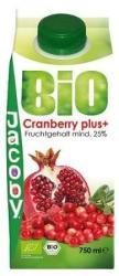JACOBY Bio Cranberry Plusz 0,75L